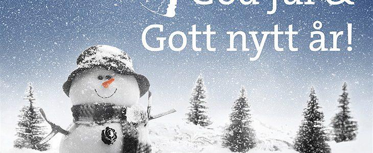 God Jul och Gott Nytt år önskar Intechtell